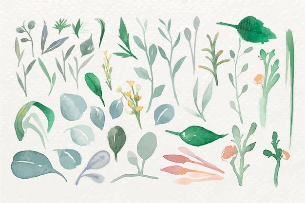 Folhas verdes em aquarela