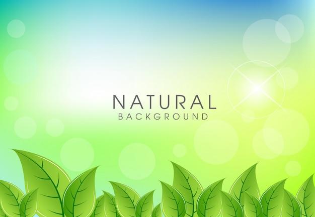 Folhas verdes frescas fundo natural