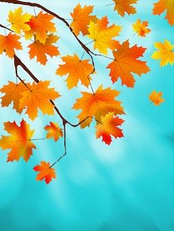 Folhas vermelhas e amarelas contra um céu azul brilhante. efeito bokeh. arquivo incluído