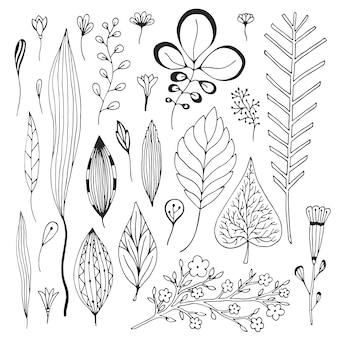 Folheia a coleção desenhada a mão do vetor. cute ilustração vetorial com esboços folhas