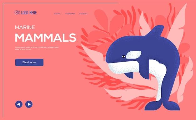 Folheto de conceito de baleia assassina, banner da web, cabeçalho da interface do usuário, insira o site. .
