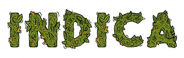 Fonte decorativa de maconha verde com desenho de letras isolado.