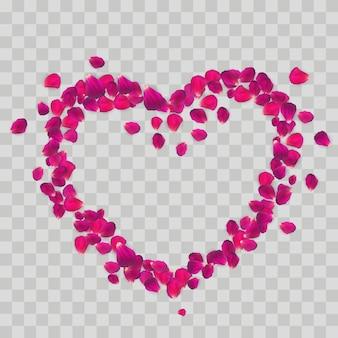 Forma de coração com pétalas de rosa isoladas em fundo transparente.