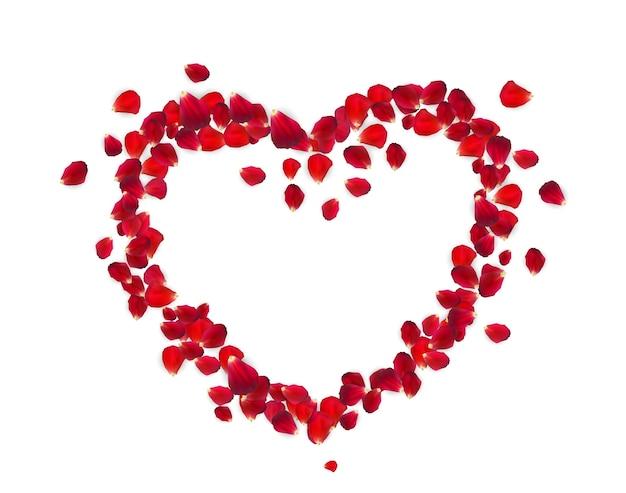 Forma de coração com pétalas de rosa isoladas no fundo branco.