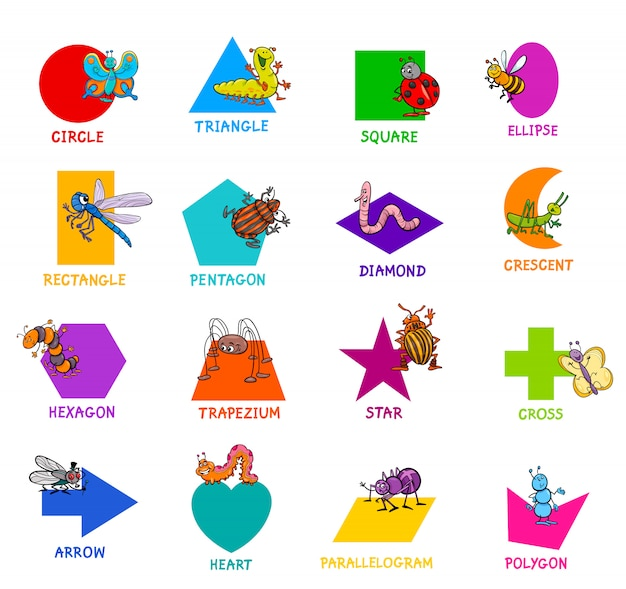 Formas geométricas básicas com personagens de insetos