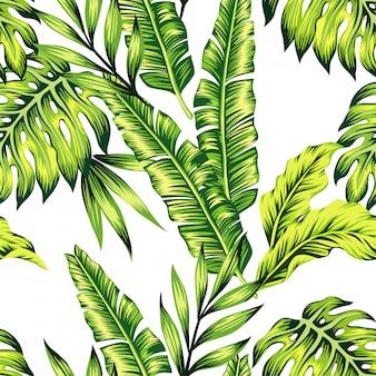 Forme o teste padrão da selva da pintura de plantas tropicas exóticas das folhas de palmeira da banana.