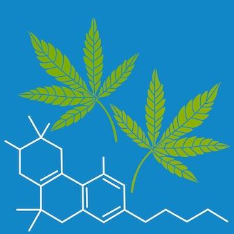 Fórmula de maconha com folhas verdes cbd droga maconha Vetor Premium