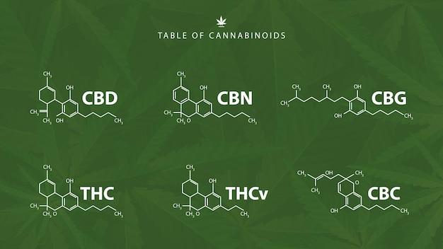 Fórmulas químicas de canabinóides naturais em fundo verde com folhas de cannabis