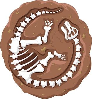 Fóssil de dinossauro dos desenhos animados