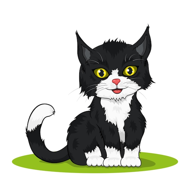 Foto de um pequeno gatinho fofo colorido em preto e branco em fundo branco