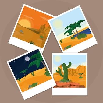 Fotos do deserto sobre a placa de cortiça
