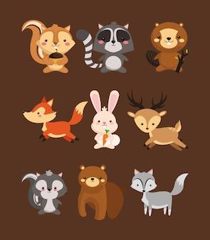 Fox coelho veado esquilo guaxinim castor skunk e urso ícones ima
