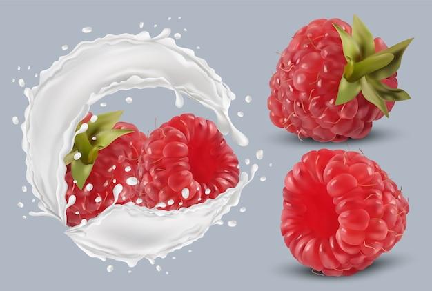 Framboesa 3d realista em respingos de leite. framboesa vermelha fresca. coquetel de leite. bagas orgânicas. ilustração em vetor.