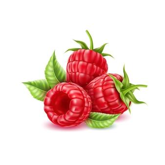 Framboesa realista com folhas verdes suculenta fruta vermelha cheia de vitaminas