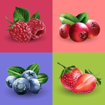 Framboesas, cranberries, mirtilos e morangos