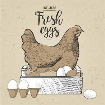 Frango e ovos. vetorial, ilustração, em, vindima, estilo