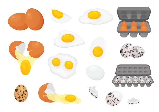 Frango fresco de fazenda de desenhos animados e ovos de codorna em pacotes. metade de ovo quebrado, cru, frito e cozido com gema. ovos para conjunto de vetores de café da manhã. dieta, refeição ou prato saudável com proteínas