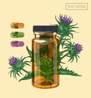 Frasco de vidro e planta de cardo de leite medicinal, ilustração desenhada à mão em estilo retro