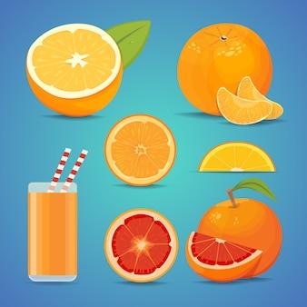 Freash fruta laranja com folhas verdes. fatias de ilustração vetorial laranja