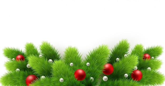 Fronteira com galhos de árvores de natal banner fundo
