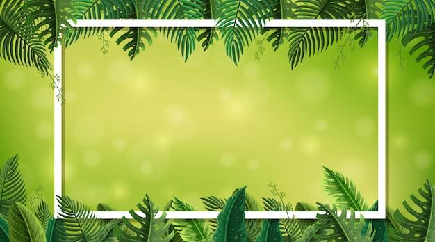 Fronteira com o tema da natureza em segundo plano