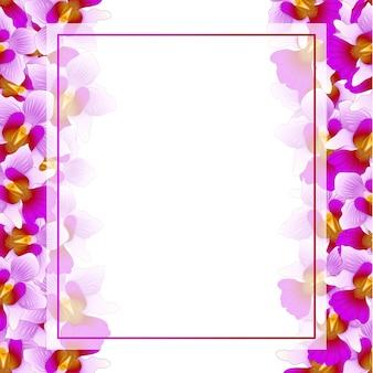 Fronteira de cartão roxo vanda miss joaquim orquídea banner