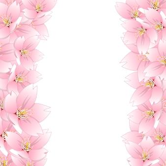 Fronteira de cerejeira sakura