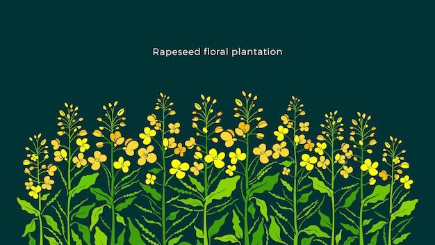 Fronteira de colza conjunto de canola planta de mostarda arte folha verde verão botão semente de flor amarela