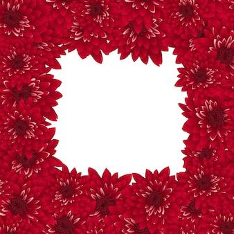 Fronteira de crisântemo vermelho