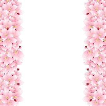 Fronteira de flor de cerejeira sakura