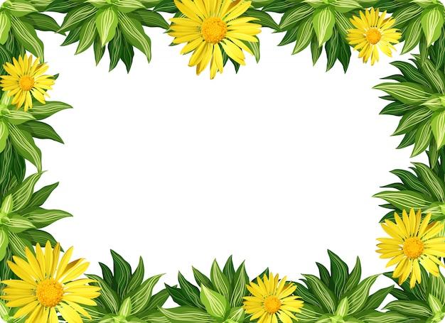 Fronteira de flor margarida amarela