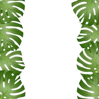Fronteira de folha de monstera philodendron