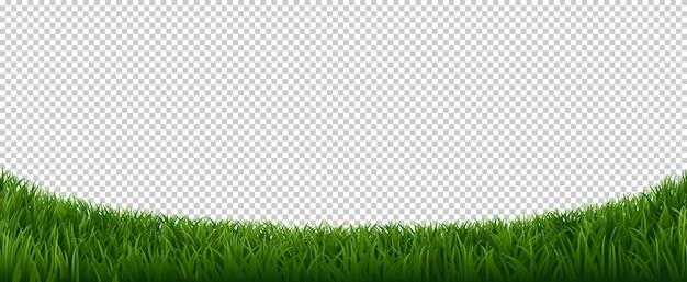 Fronteira de grama realista. gramado verde da erva, quadro das plantas da erva do jardim, fundo fresco do elemento da beira do gramado. grama de gramado de borda horizontal, ilustração de campo verde prado
