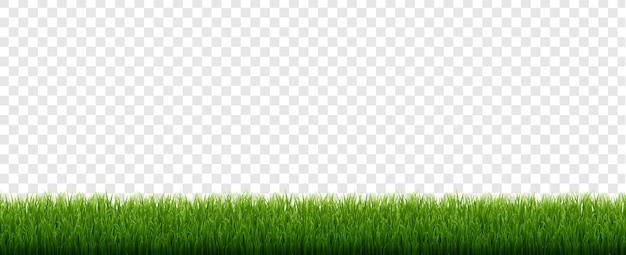 Fronteira de grama verde com fundo transparente isolado