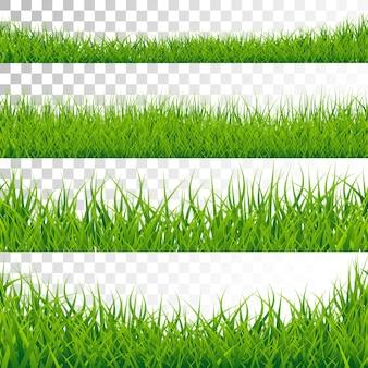 Fronteira de grama verde definida no plano de fundo transparente