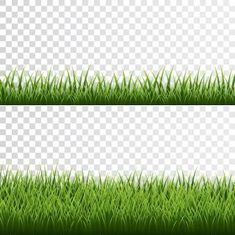 Fronteira de grama verde em fundo transparente.