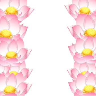 Fronteira de lótus rosa indiana