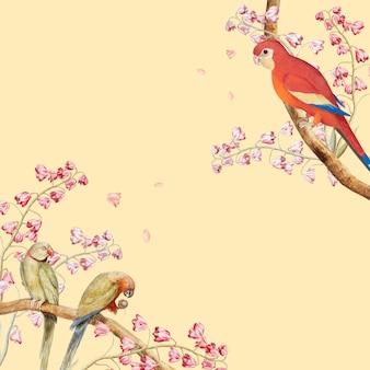 Fronteira de maquete de papagaios