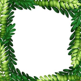 Fronteira de ramo de folha de natureza