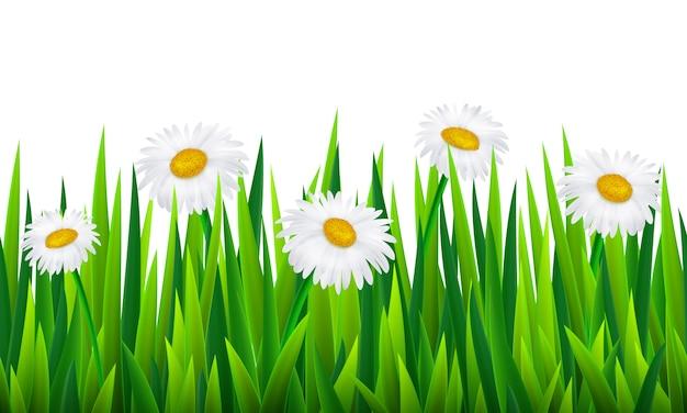 Fronteira sem costura com grama e flores