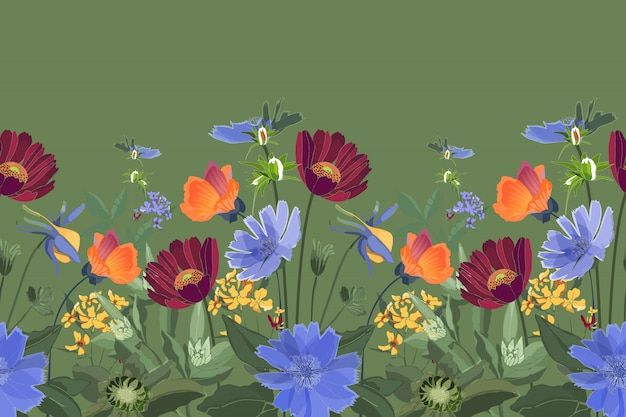 Fronteira sem costura floral. verão flores, folhas verdes. chicória, malva, gaillardia, calêndula, margarida. flores marrons, alaranjadas, amarelas, azuis