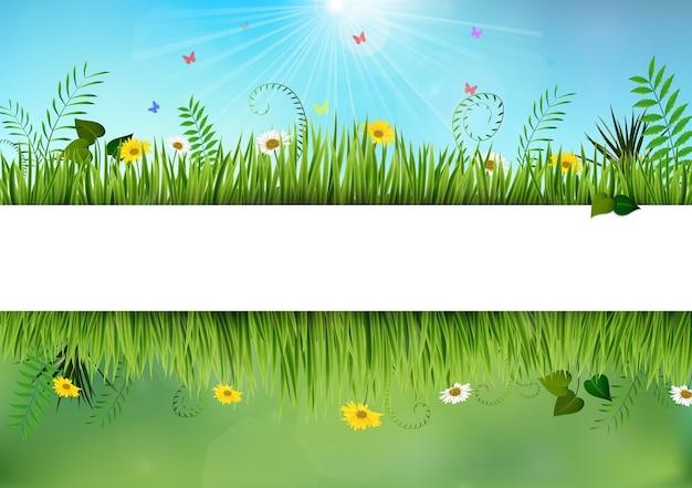 Fronteiras frescas de primavera e daisy