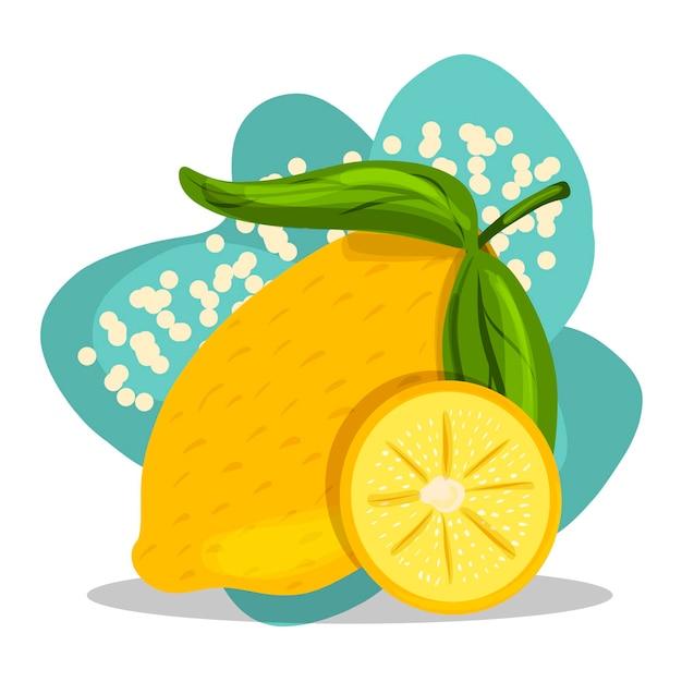 Fruta. desenho à mão. limão