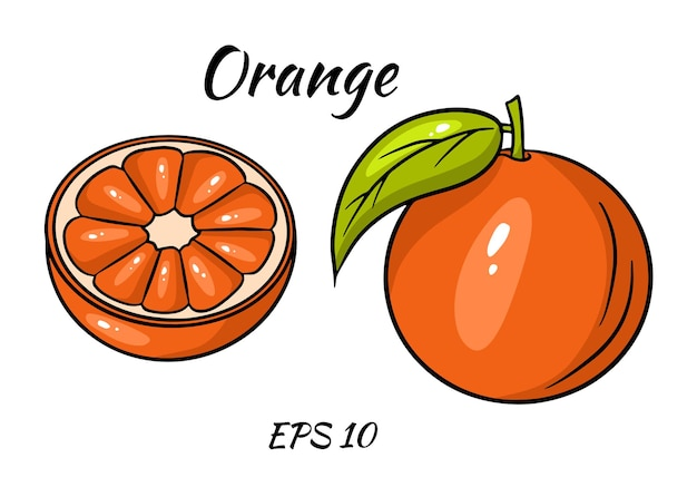 Fruta fresca de laranja tropical em estilo cartoon