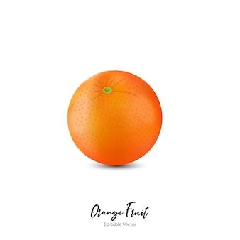 Fruta laranja realista