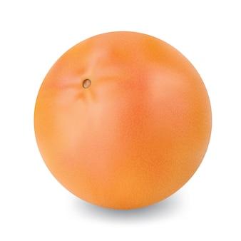 Fruta uva vermelha