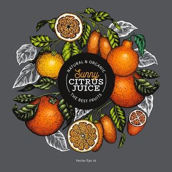 Frutas cítricas em um círculo