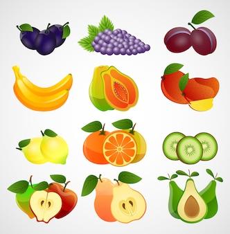 Frutas coleção de fatias no fundo branco