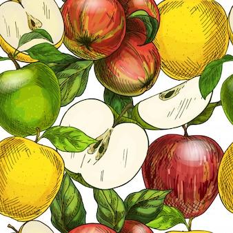 Frutas do jardim mão desenhada sem emenda