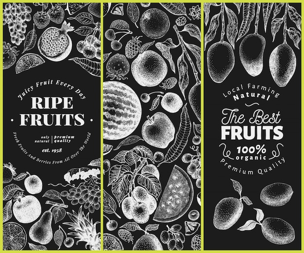 Frutas e bagas mão ilustrações desenhadas no quadro de giz. conjunto de estilo retrô gravado.